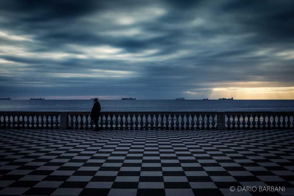 Checkers - Dario Barbani
